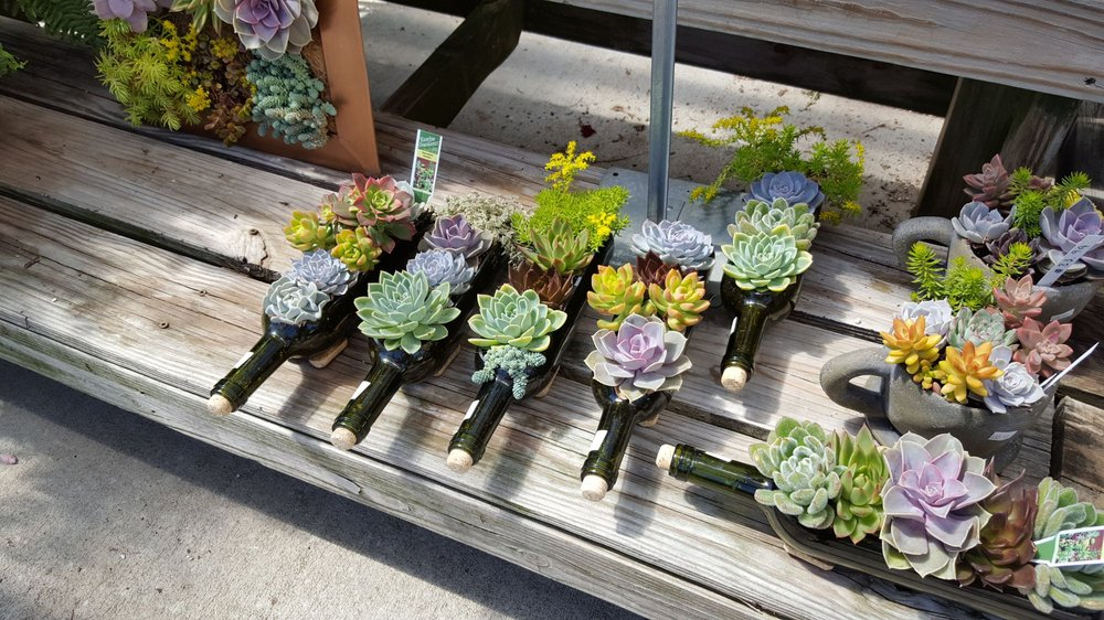 Good Earth Produce & Garden Center: 150 Davis Rd, Augusta, GA