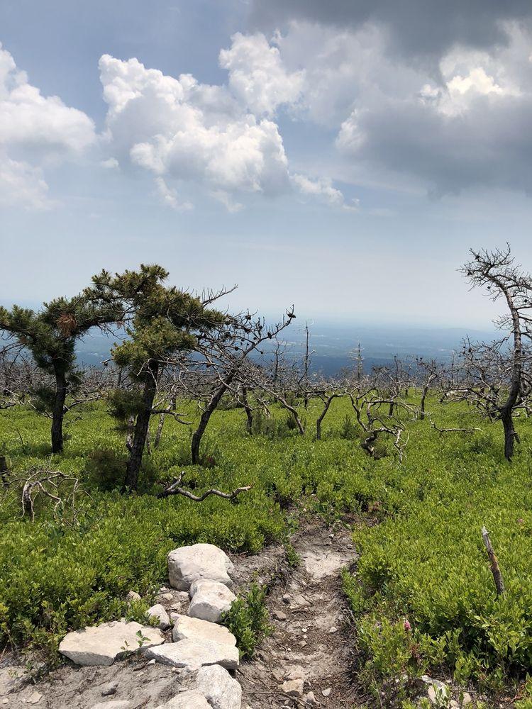 VerKeerderkill Falls: Sam's Point Preserve, Cragsmoor, NY