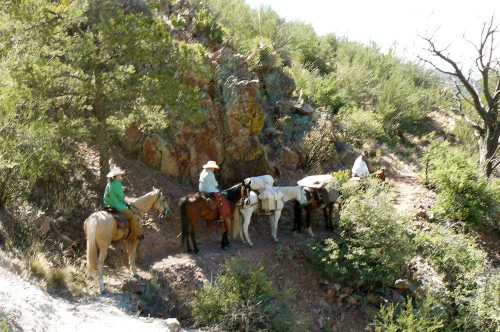 Mackie Redd Horsemanship: Hillsboro, NM