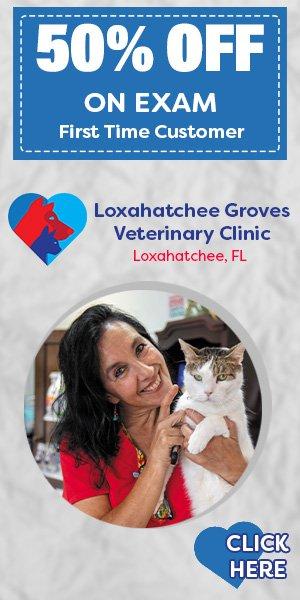 Loxahatchee Groves Veterinary Clinic: 14579 Southern Blvd, Loxahatchee, FL