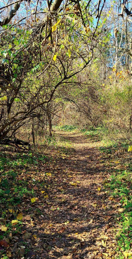 Kelley Nature Preserve: 297 OH-126, Loveland, OH