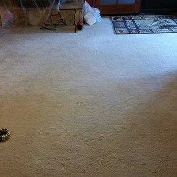 Carpet Dyeing Reviews Ideas