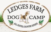 Ledges Farm Dog Camp: 1487 Q Ave, Boone, IA