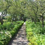 photo of green animals topiary gardens portsmouth ri united states - Green Animals Topiary Garden