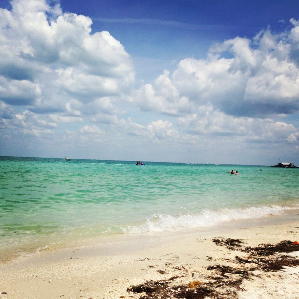Anna Maria Island: 20 Photos & 17 Reviews