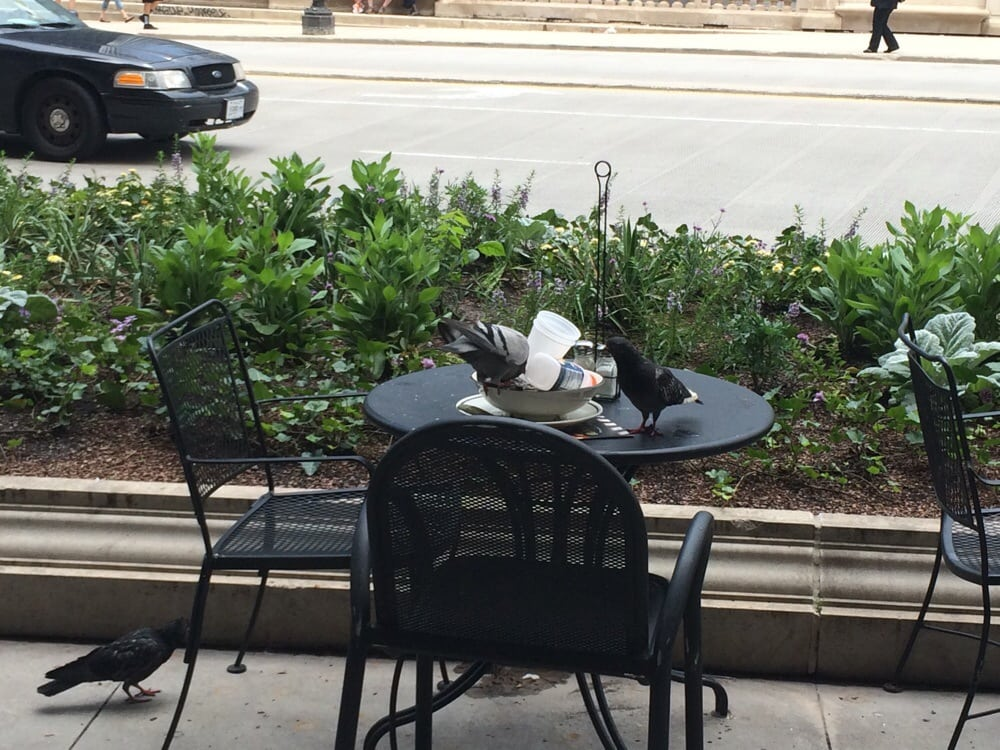 Breakfast Restaurants Near Michigan Ave Chicago