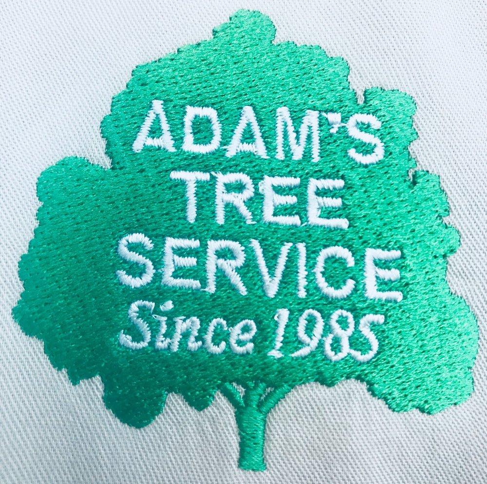 Photo Of Adams Tree Service Katy Tx United States