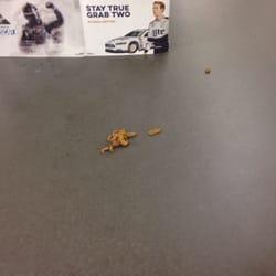 photo of walmart supercenter weaverville nc united states someones dog took a