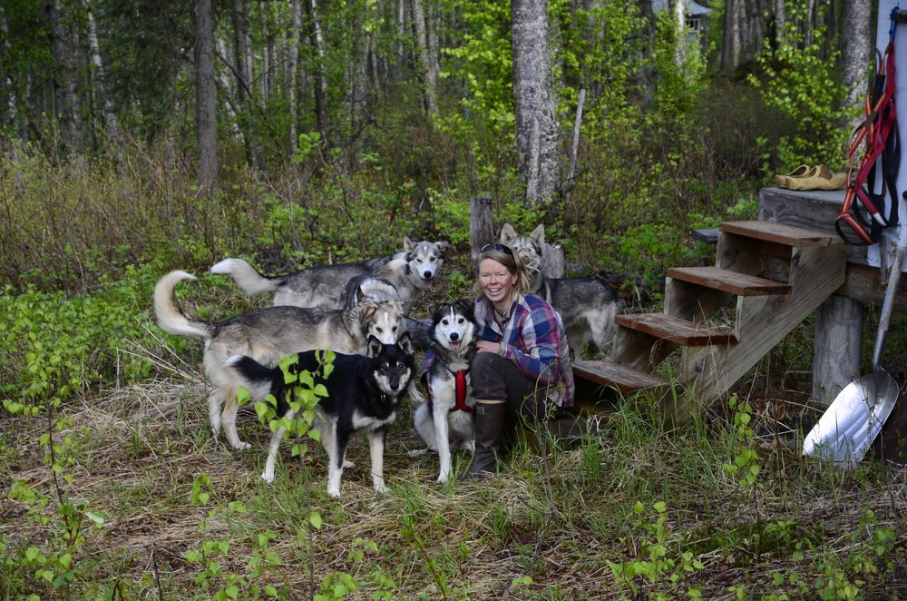 The Flower Kennel and Homestead LLC: S Howling Malamute St, Talkeetna, AK