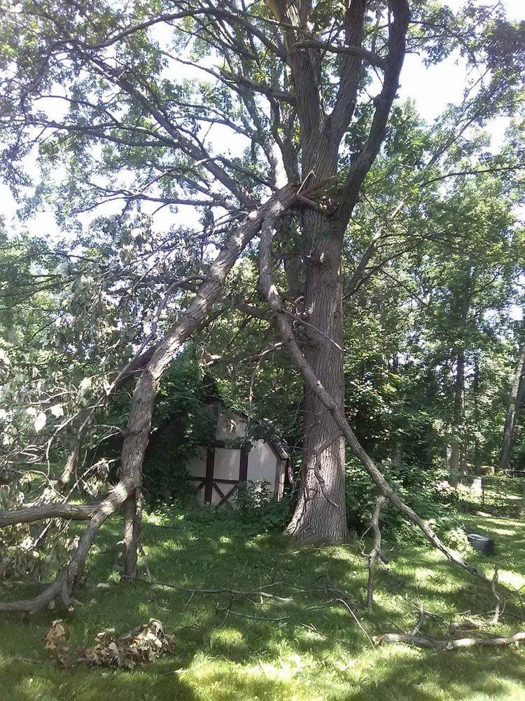 Big Bear Outdoor Services: 3182 Stirling Ave, Auburn Hills, MI