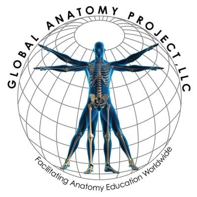 Global Anatomy Project - Medical Centers - Ann Arbor, MI - Phone ...