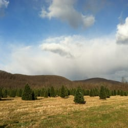 Evergreen Valley Christmas Tree Farm - Christmas Trees - 71 Jackson ...