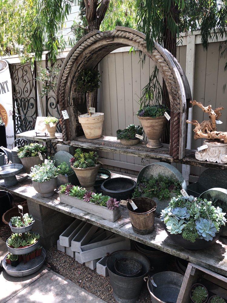 Photos For Molly Wood Garden Design