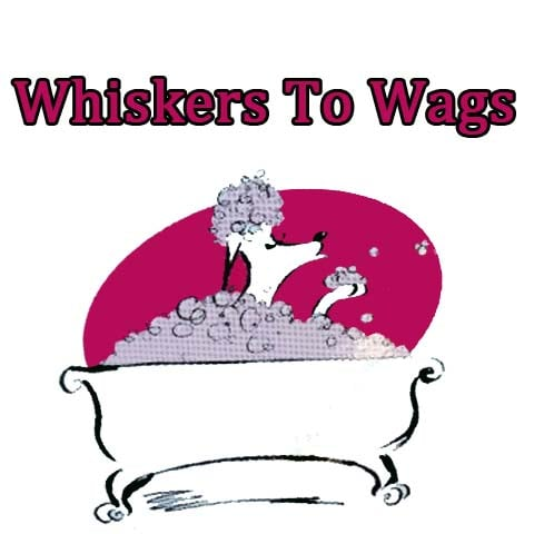 Whiskers To Wags: 509 W Taylor, Creston, IA