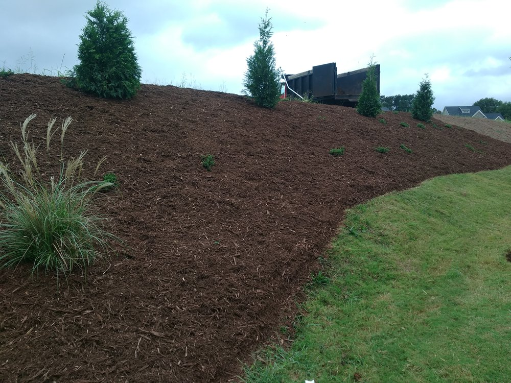 Phillips Landscaping and More: Easley, SC