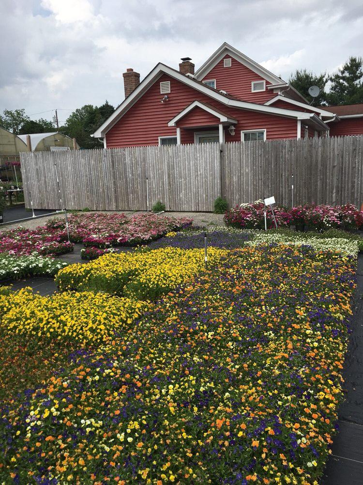 Locust Avenue Farm: 982 Locust Ave, Bohemia, NY