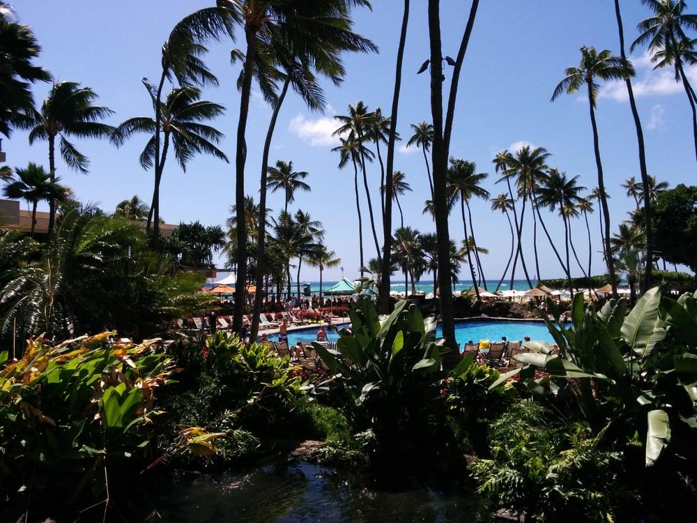 Hilton Hawaiian Village Waikiki Beach Photo Gallery: Main Pool Area