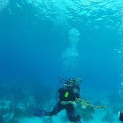 Scuba diving chelmsford