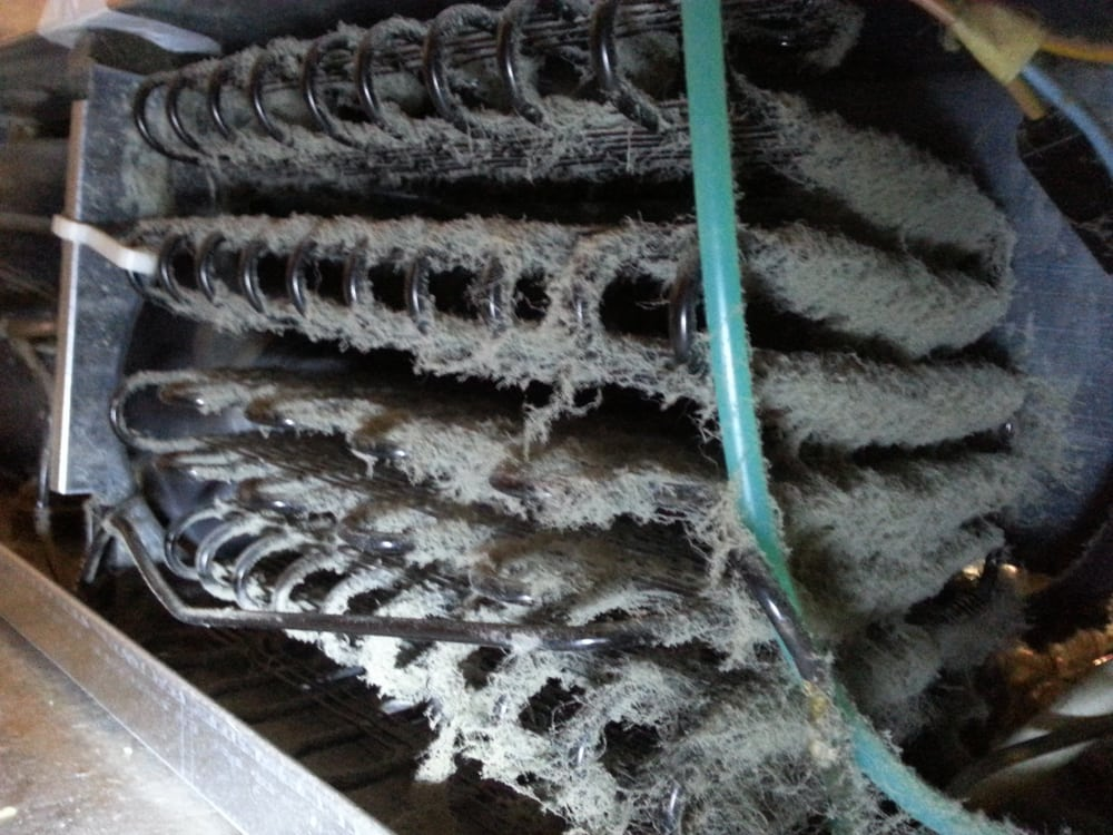 A Refrigerators Dirty Condenser Coil Yelp
