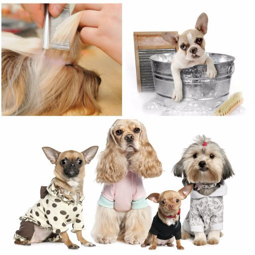 Pampered Pets Grooming and Resort: 36455 S 580th Rd, Jay, OK