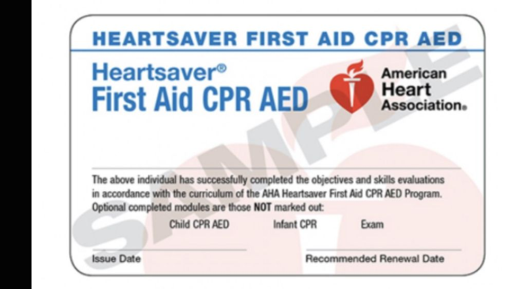 Revive Cpr 20 Photos 53 Reviews First Aid Classes 148