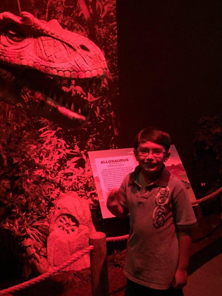 Dinosaurs The Exhibit