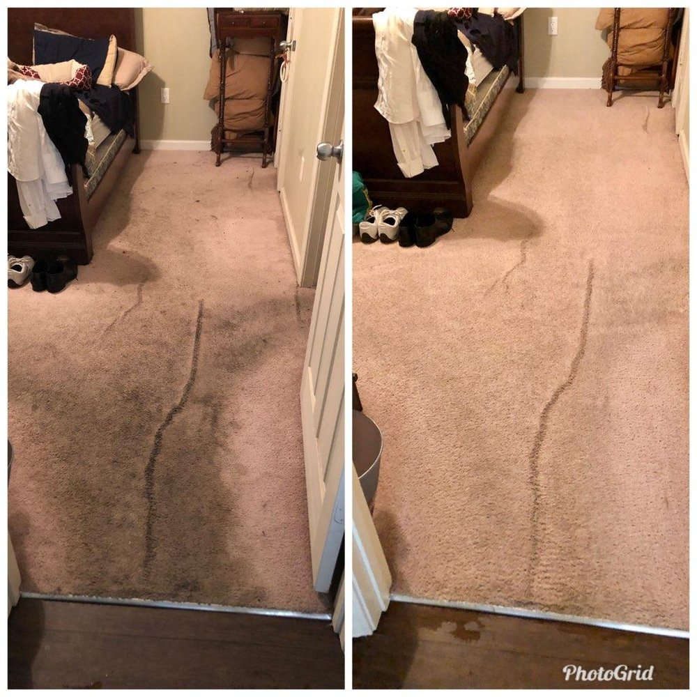 All Kleen Carpet Cleaning: 412 Lark Run, Oxford, MS