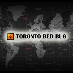 Best Bed Bug Exterminator In Toronto On Last Updated January 2019