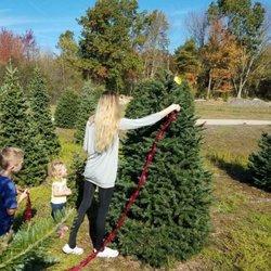 Henry's Christmas Tree Farm 27 Photos 14 Reviews Christmas  - Christmas Trees Ri