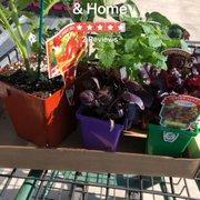 Stein S Garden Home Nurseries Gardening 2727 Eaton Rd Bellevue Wi Phone Number