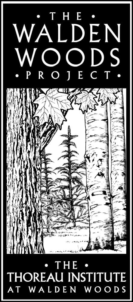 walden woods project Walden woods project title of project: thoreau bicentennial statewide read assistant main contact: whitney retallic, whitneyretallic@waldenorg , 781-259-4721.
