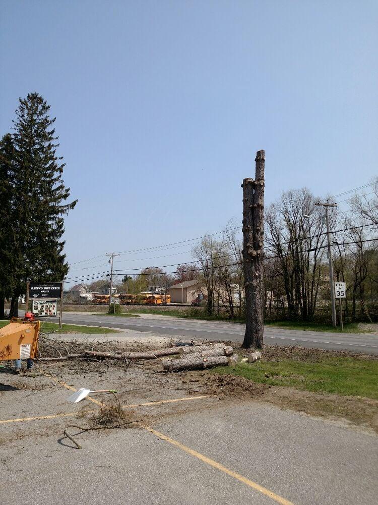 All Seasons Tree & Landscaping: Belgrade, ME