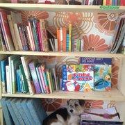 Libreria Dama di Marco Tedeschi - Bookstores - Via di Vermicino ...