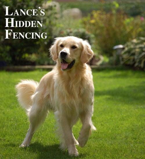Lance's Hidden Fencing
