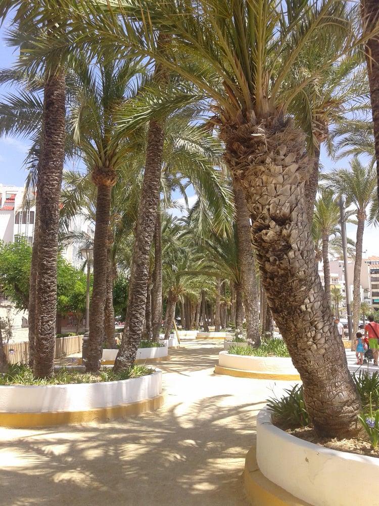 Parc d'Elx: Carrer de Colón, s/n, Benidorm, A