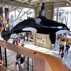 monterey bay aquarium 10178 photos 3814 reviews aquariums