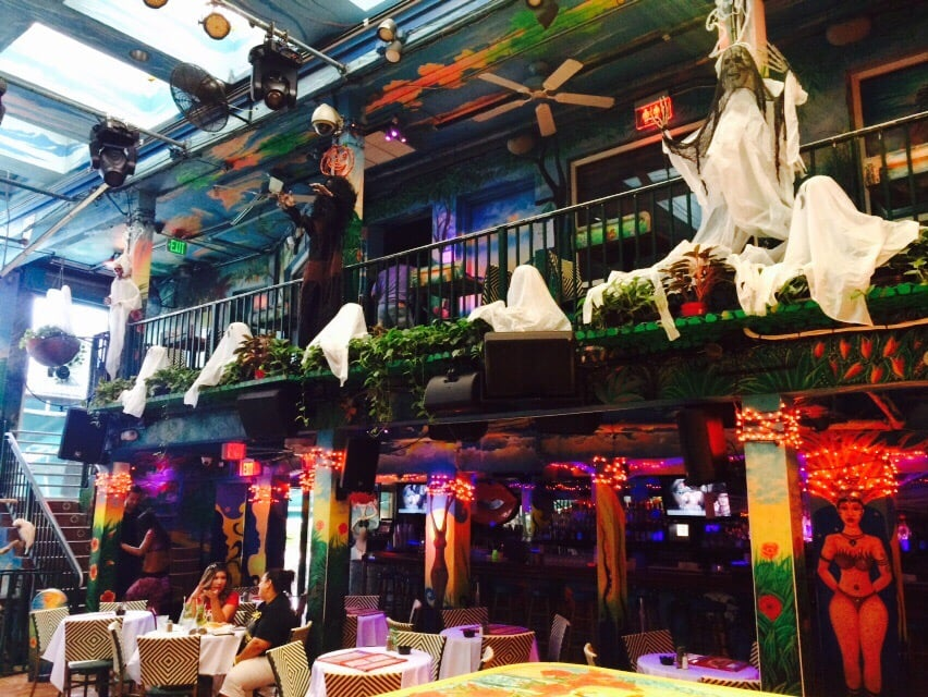 photo of mangos tropical cafe miami beach fl united states decorating for - Tropical Cafe 2015