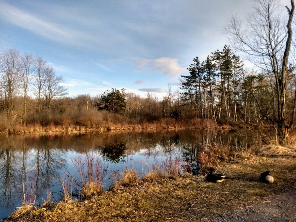 Reinstein Dr Victor Woods Nature Preserve: 77 Honorine Dr, Depew, NY