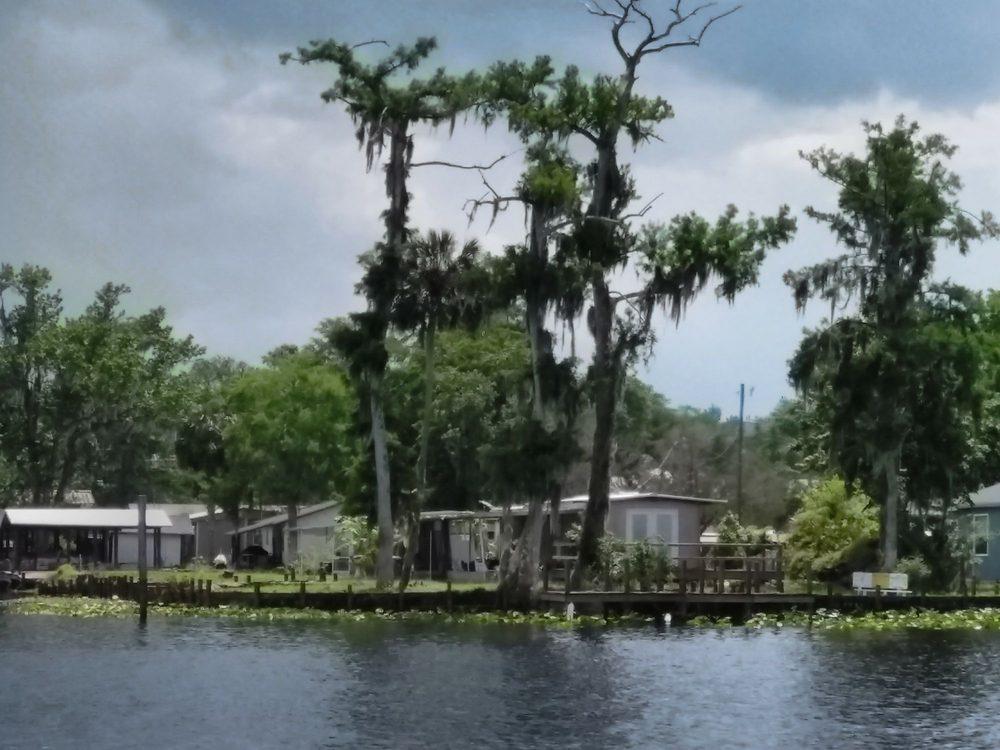 St Johns River Tours Inc: 55716 Front St, Astor, FL