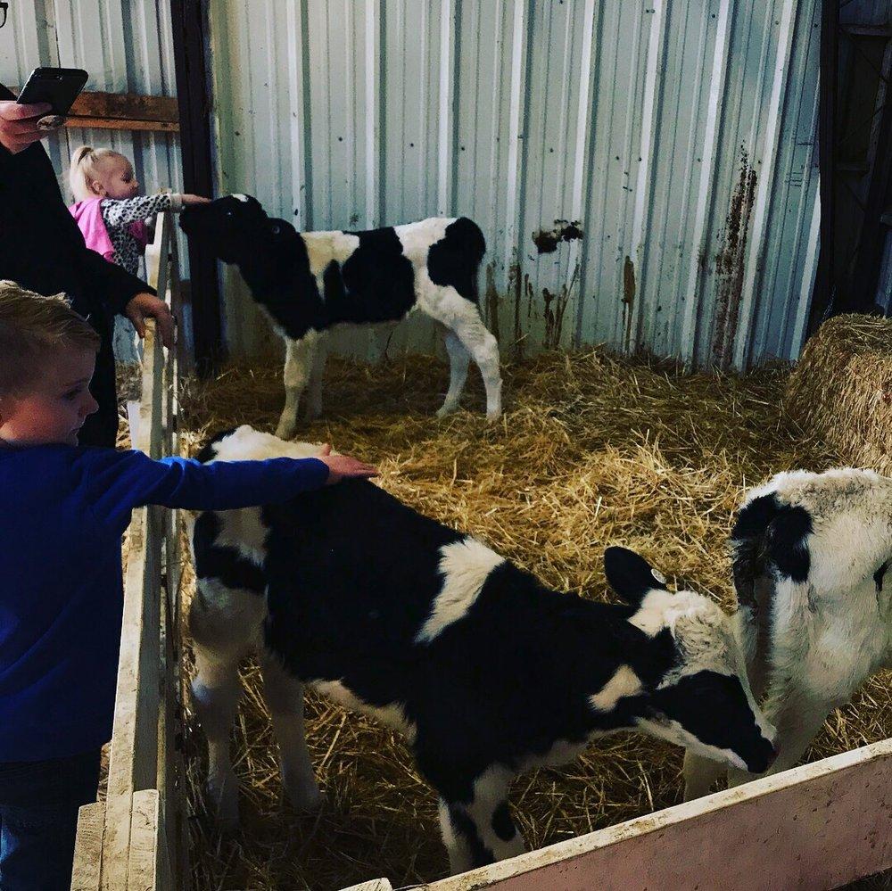 Photo of Shatto Milk: Osborn, MO