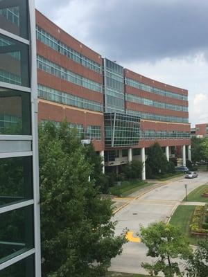 University Hospital 1350 Walton Way Augusta, GA Orthopedic