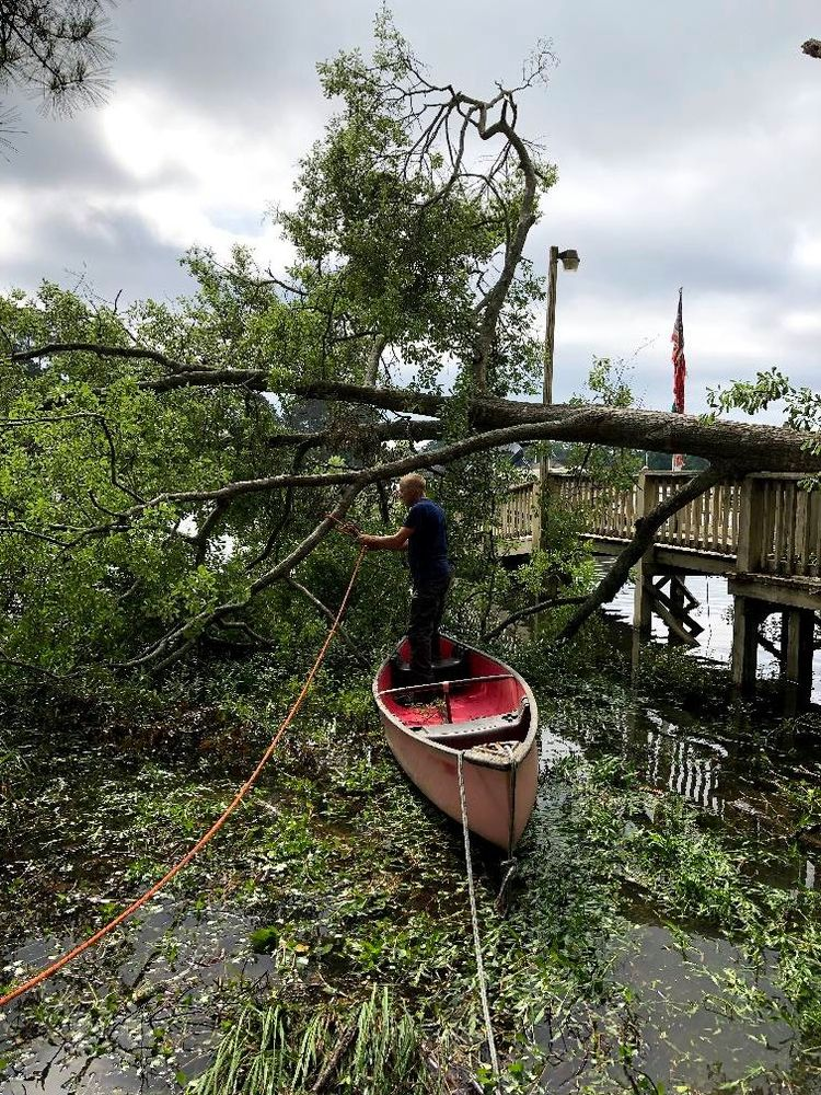 Nate Foster Tree Care: Chapin, SC