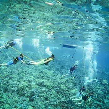 Trilogy Excursions - 925 Photos & 1447 Reviews - Snorkeling