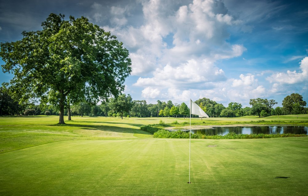 Pine Springs Golf Course: 5634 County Road 334, Tyler, TX