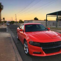 cca6791e5c Avis Rent A Car - 56 Reviews - Car Rental - Phoenix