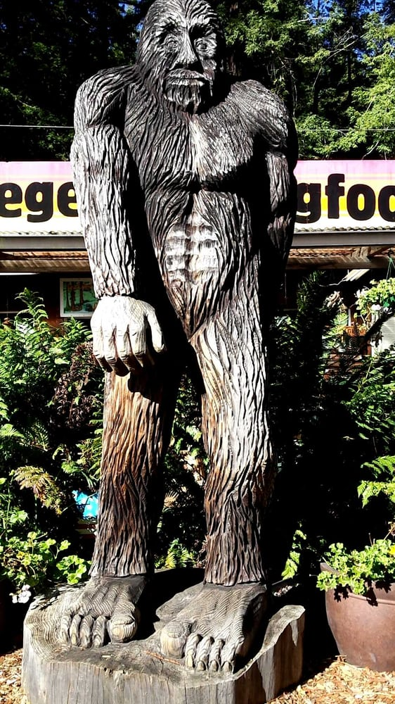 Legend of bigfoot photos reviews landmarks