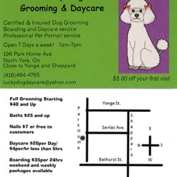 Photo Of Lucky Dog Daycare Grooming