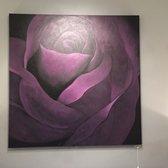 Photo Of Adams Interiors   Fort Lauderdale, FL, United States. Purple Rose!