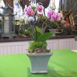 Hidden gardens extraordinary floral design antiques closed 11 photo of hidden gardens extraordinary floral design antiques saratoga springs ny united states mightylinksfo