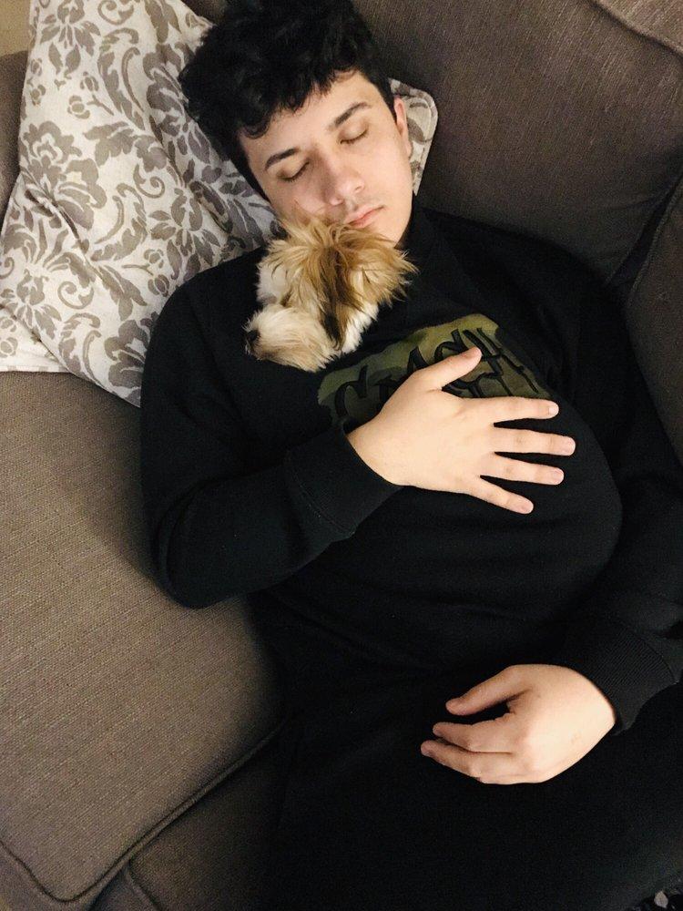 Pets Plus
